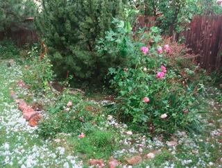 hail_2018-06-18_2.jpg