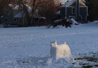 snow_dog_louisville_2020-04_3510.jpg