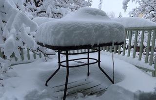 snow_louisville_colo_2020-04_3490.jpg